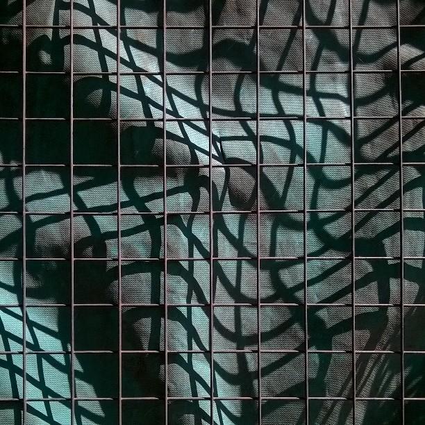 instagramcapture_04162426-1fcd-42d0-80ec-02a6c66c9d7e